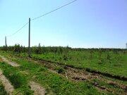 Ровный, сухой участок в ДНП Лесное - 80 км Щелковского ш. - д.Юрцово - Фото 5