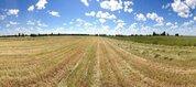 Сельскохозяйственный производственный кооператив в Псковской области - Фото 4