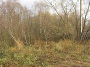 Продам участок в деревне Пирогово, Мытищинского района - Фото 4