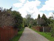 Загородный дом в окружении леса - Фото 4