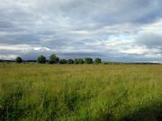 Продается участок 92 сотки с домом в д. Букрино Калужской области - Фото 1