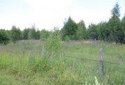 Участок на берегу р. Волга, с лесным массивом, д. Коровино. - Фото 3