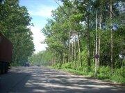 Продается земля ИЖС в 4 км от Дмитрова, д. Кончинино - Фото 3