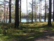 Участки на берегу Десногорского водохранилища - Фото 2
