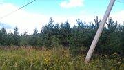 50 сот под ИЖС в д.Илькино - 95 км Щёлковское шоссе - Фото 3