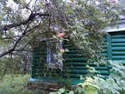 Дом и земля в селе Киевское направление - Фото 2