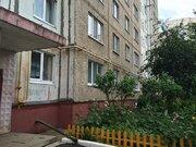 3-х комнатная квартира по отличной цене - Фото 1