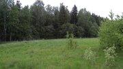 Сельский рай - Фото 2