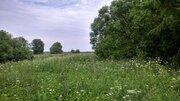 Земельный участок 60 сот. лпх в д. Сальково, Сергиево-Посадский район - Фото 2
