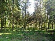 Лесной участок в Кобяково, СНТ Топаз, 22 сотки - Фото 5
