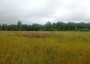 Земля с/х назначения 50 км от МКАД, 5 км от Ногинска - Фото 1