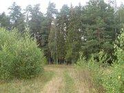 Участок 15 соток на окраине пгт Фряново 57 км по Щелковскому шоссе. - Фото 5