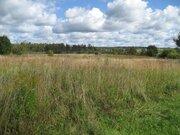 Продается земельный участок,50сот д. Житниково, Сергиево Посадский р-н - Фото 1