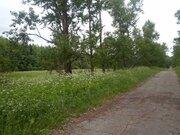 Участок 24 Га окружен с трех сторон лесом, с асфальтированным подъездом - Фото 2