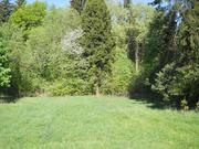Лесной участок 10 соток в истринском районе - Фото 1