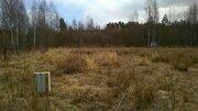 Участок 16 соток ИЖС в Снетково под Приозерском - Фото 5
