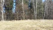 Д. Дулепово, земельный участок 12 соток, ИЖС - Фото 5