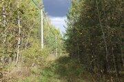 Участок в смешанном лесу на берегу реки Угры - Фото 3