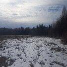 Продам участок 7,42 соток на северо-западе Московской области - Фото 3