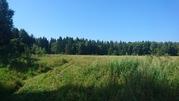 Прилесной земельный участок в д. Терехунь, Московская область - Фото 3