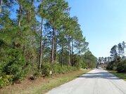 Продажа участка в г. Палм Кост, Флорида США - Фото 5