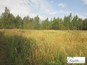 Земельный участок 50 соток - Фото 2