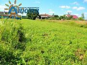 Участок 10 соток в деревне Тиньково Калужской области. - Фото 4