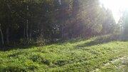 Участок 12 соток с лесными дерев. в деревне Старокурово Ступинский р-н - Фото 2