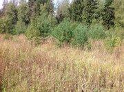 Участок у леса - Фото 3