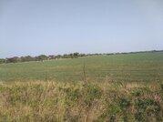 Продам земельный участок 11,5 га - Фото 1