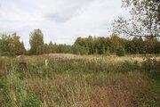 Продажа земельного участка 32 сот. в д. Токарево - Фото 2