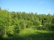 Земельный участок под дачное стоит. 100 сот.Духанино.35 км от МКАД - Фото 2