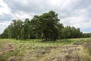 Продается земельный участок в Ступинском районе - Фото 4