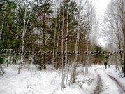 Щелковское ш. 100 км от МКАД, Никифорово, Участок 650 сот. - Фото 5