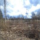 Продам земельный участок в п.Торфяное - Фото 3