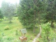 Продается дом + баня на 30 сотках земли в лесу. - Фото 5