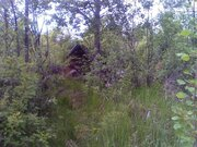 Продам земельный участок 12 соток в Талдомском районе, д. Бельское, . - Фото 2