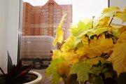 5 250 000 Руб., Купи видовую квартиру в новом доме в Горках 10, Купить квартиру Горки-10, Одинцовский район по недорогой цене, ID объекта - 322604263 - Фото 19