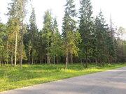 Продается земельный участок в Новой Москве