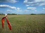 Продажа земельного участка д. Тимохино, Егорьевский р-н - Фото 4