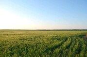 Продается участок 63,34 га в Ростовской области, Красносулинский р-н - Фото 3