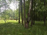 20 соток газ лес на реке - Фото 4