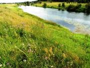 Участок в деревне 30 соток, на берегу реки Протва. - Фото 3