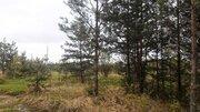 Продам лесной участок 10 соток всего 50 км от МКАД по Горьковскому ш. - Фото 2