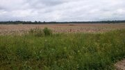 Лот: в95 Продажа земельного участка в Истринском районе - Фото 4
