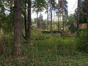 Дом в стародачном месте пос. Кратово - Фото 4