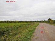 Продам участок 4га д. Отаево Волховский район. Ленинградской области - Фото 2