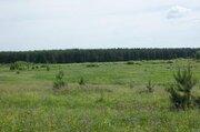 Земля ИЖС 3,5 га в 40 км от Н.Новгорода, рядом хвойные леса - Фото 2