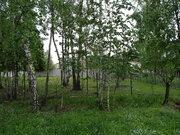 Осташковское 20 км от МКАД, вблизи д. Витенево. Участок 25 соток - Фото 4