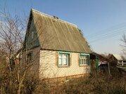Дачи в Витебской области